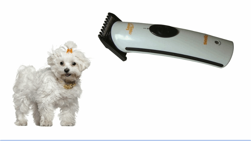 Maquinilla corta pelo para mascotas Smart Clipper Pet